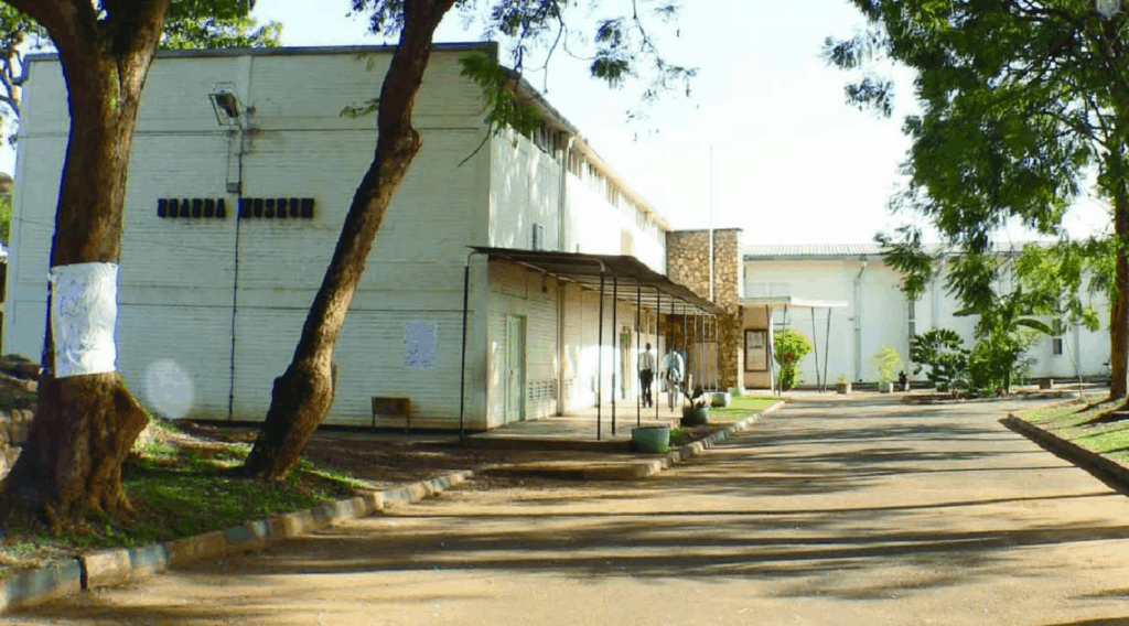 uganda museum of modern african art